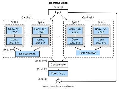 ResNeSt: Split-Attention Networks