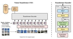 An Image is Worth 16×16 Words: Transformers For Image Recognition At Scale