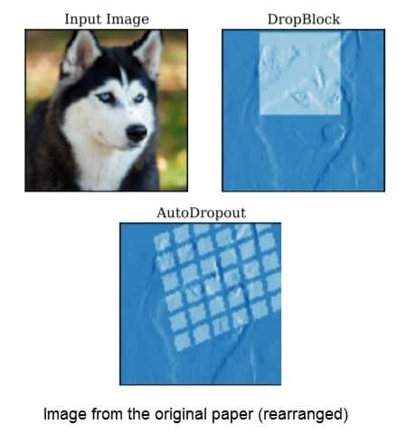 AutoDropout: Learning Dropout Patterns to Regularize Deep Networks